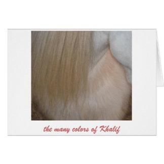 Khalif Kolors Card