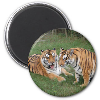 khan-n-china009 2 inch round magnet