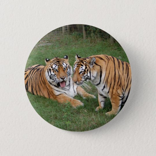 khan-n-china009 pinback button