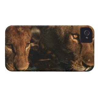 Khwai River, Moremi Wildlife Reserve, Botswana iPhone 4 Case-Mate Case