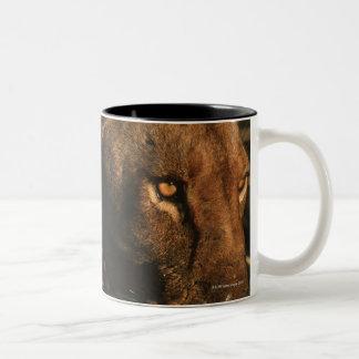 Khwai River, Moremi Wildlife Reserve, Botswana Two-Tone Coffee Mug