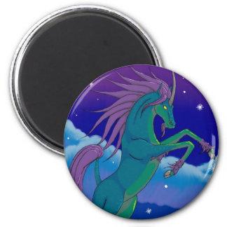 ki-lyn 2 inch round magnet