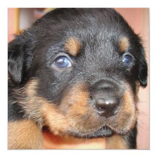 Kia Ora ...I'll be Your Dog Card