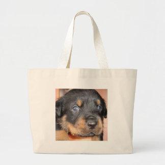 Kia Ora… seré su perro Bolsa