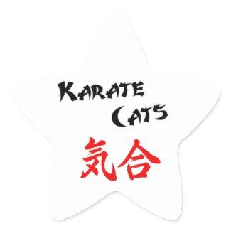 ...KiAi! Star Sticker