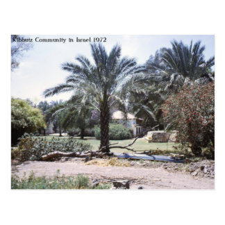 Kibbutz Community in Israel Postcard