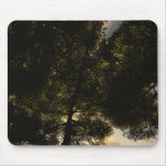 Kick Back In The Grass Mousepads