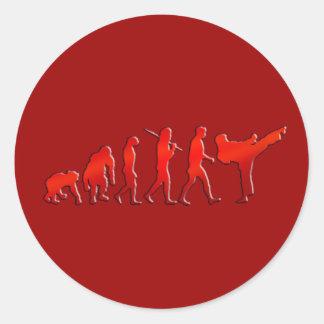 Kick boxing Mixed Martial Arts Artists Evolution Classic Round Sticker