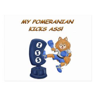Kickboxing Pomeranian Post Card