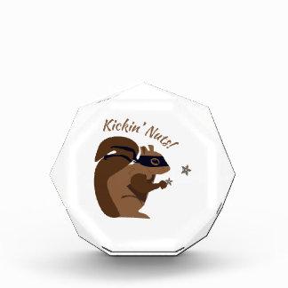 Kickin Nuts Acrylic Award