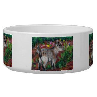 Kid aceo pet water bowls