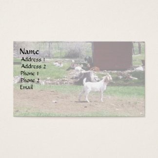 Kid at Red Hut Pasture Business Card