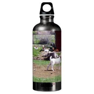 Kid at Red Hut Pasture SIGG Traveler 0.6L Water Bottle