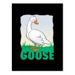 Kid Friendly Goose Postcard