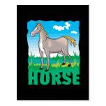 Kid Friendly Horse Post Card