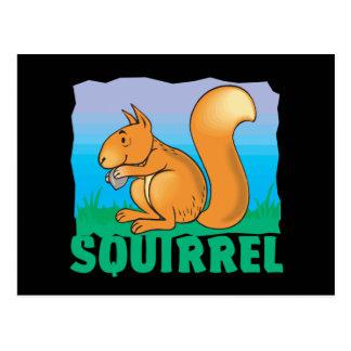 Kid Friendly Squirrel Postcard