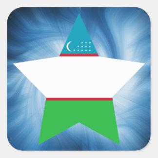 Kid Friendly Uzbekistan Flag Star Square Sticker