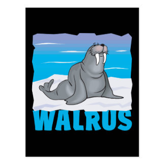 Kid Friendly Walrus Postcard
