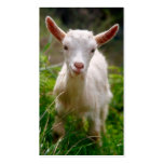 Kid Goat Business Card Template