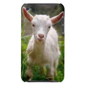 Kid Goat iPod Touch Cover