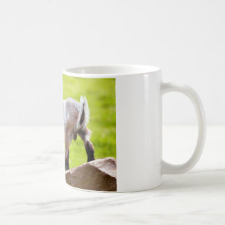 Kid on rock coffee mug