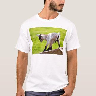 Kid on rock T-Shirt