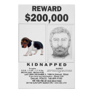 Kidnapped Fully CUSTOMIZABLE Poster REWARD