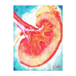 Kidney Bisection Canvas Print