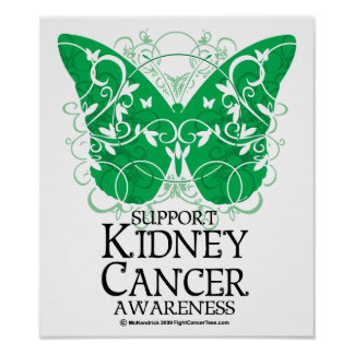 Kidney Cancer Butterfly Poster