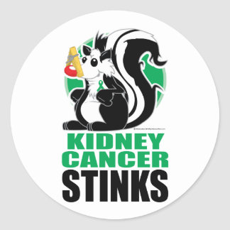 Kidney Cancer Stinks Classic Round Sticker