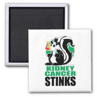 Kidney Cancer Stinks Magnet