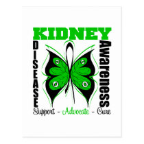 Kidney Disease Awareness Butterfly Postcard