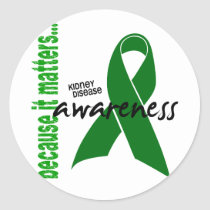 Kidney Disease Awareness Classic Round Sticker