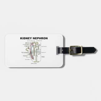 Kidney Nephron Gray s Anatomy Textbook Tag For Luggage