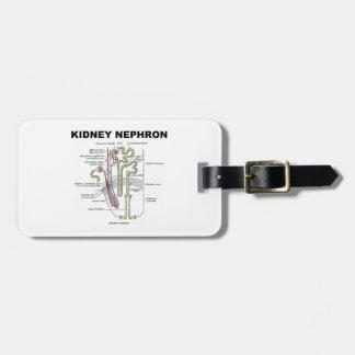Kidney Nephron (Gray's Anatomy Textbook) Bag Tag