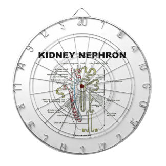 Kidney Nephron (Gray's Anatomy Textbook) Dartboard With Darts