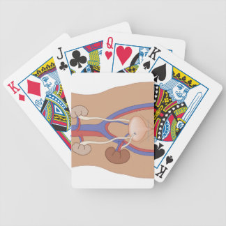 Kidney Transplant Bicycle Playing Cards