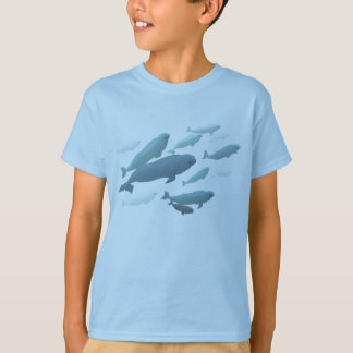 Kid's Beluga Whale T-Shirt Cute Whale Art Shirts