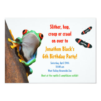 Kids Frog Insect Birthday Party Invitation