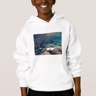 Kids Hooded Sweatshirt - Powder Blue Surgeon Fish