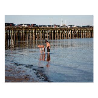 Kids in Ptown Harbor Postcard