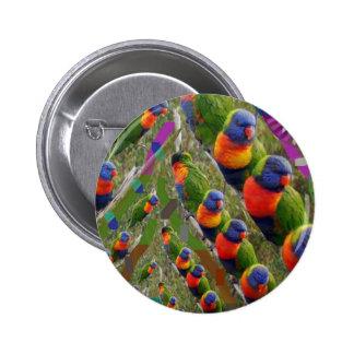 KIDS love Parrots Buttons