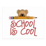 Kids School Gift Postcard