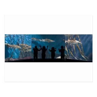 Kids silhouette at aquarium postcard