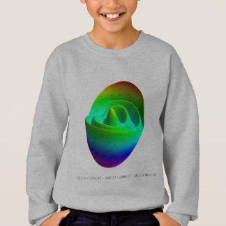 Kids sweatshirt: Z(11, 1) Sweatshirt