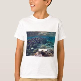 Kids T-Shirt - Powder Blue Surgeon Fish