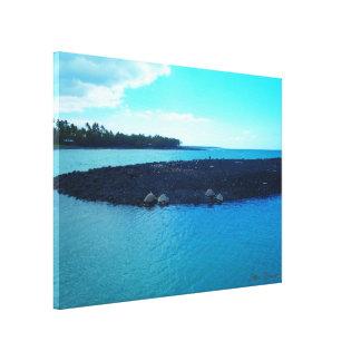 Kiholo Bay turles coastline scenic Hawaii canvas