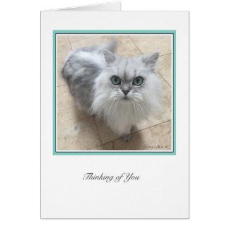 KiKi Ciollection  # 2 Card