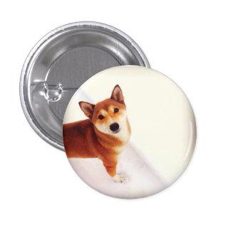 Kiki el botón de la mochila de Shiba