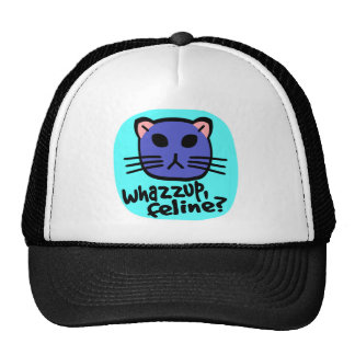 Kiki Kitty Face, Whazzup, Feline? With Background Hats